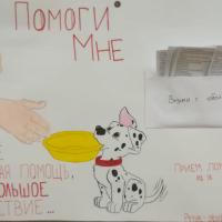 28.12.2018 Посещение приюта бездомных животных в поселке Столбище.