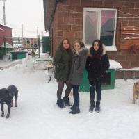 Посещение приюта бездомных животных в поселке Столбище_3